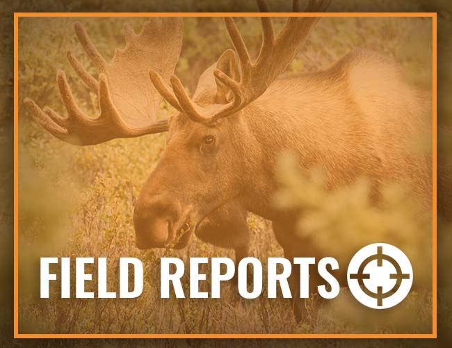 Spaulding Lake Outfitters Field Reports