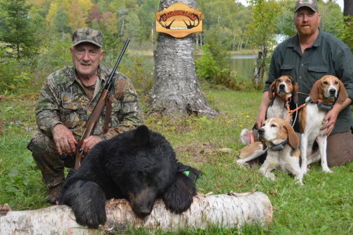 guided maine black bear hunts with hounds maine bear. Black Bedroom Furniture Sets. Home Design Ideas
