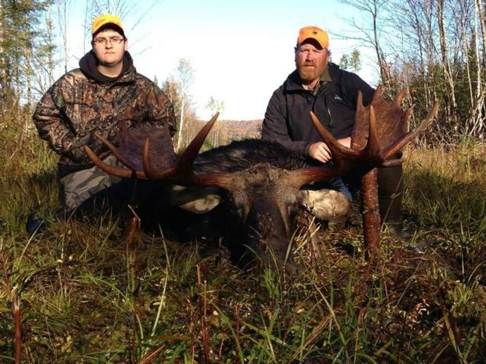 Maine Moose Hunts