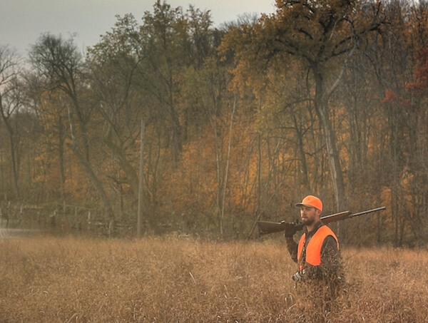 Upland Hunting Information